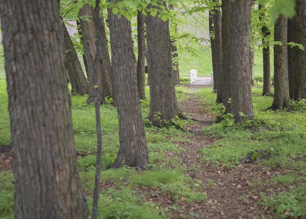 Gulskogen gård gress