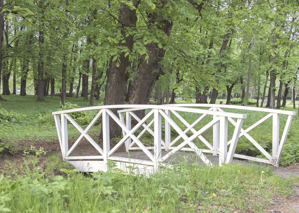 Gulskogen gård skog
