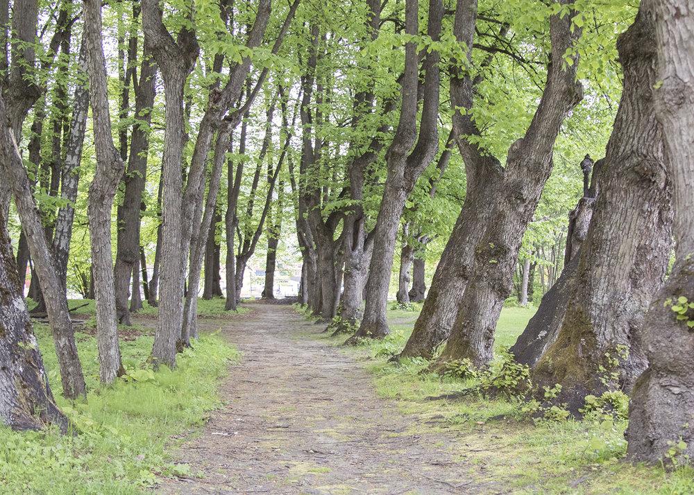 Gulskogen gård vei