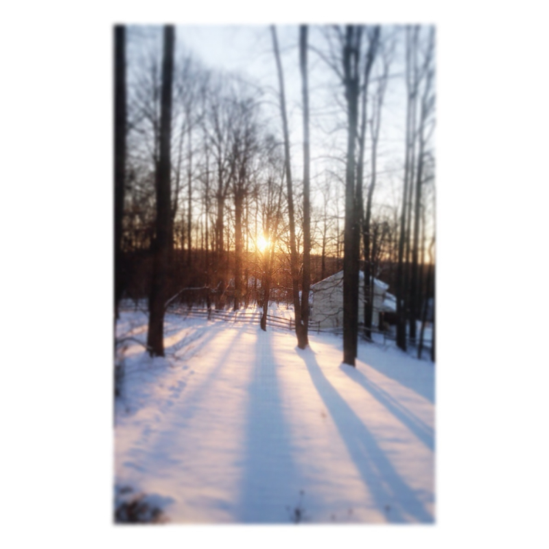 2014-01-22_001