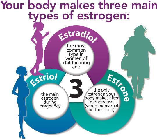 changes hormones ageing에 대한 이미지 검색결과