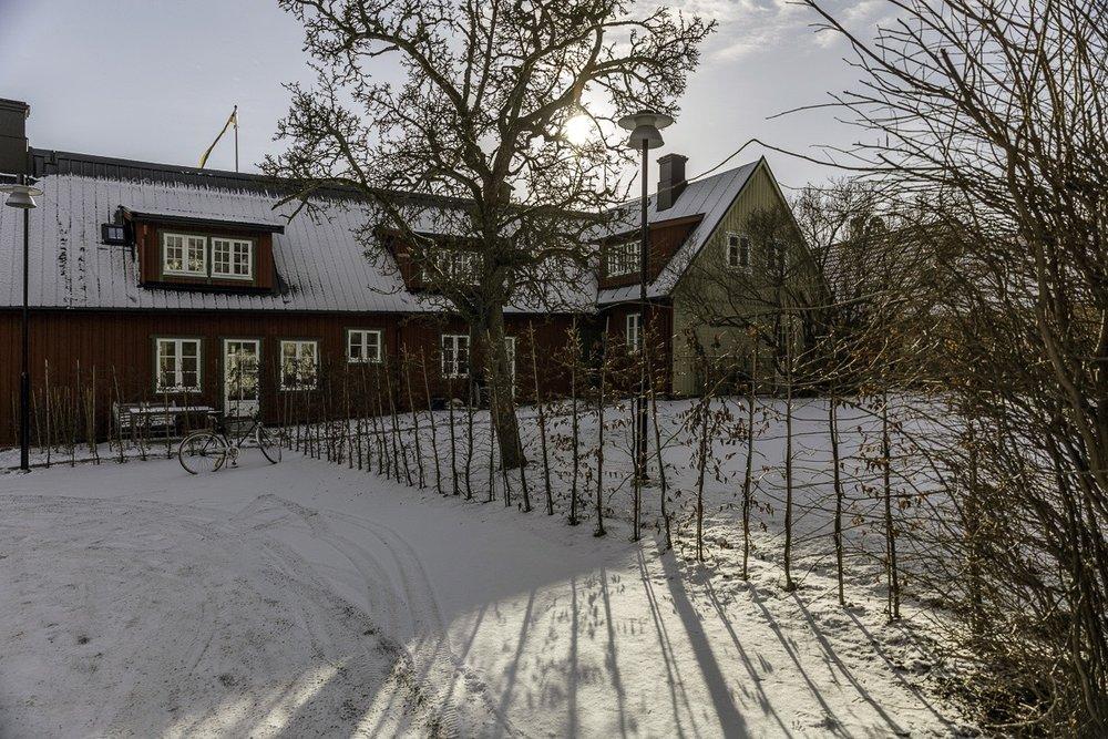 MMB_Agardhsg_feb_U6A7605 foto Mattias Nilsson.jpg