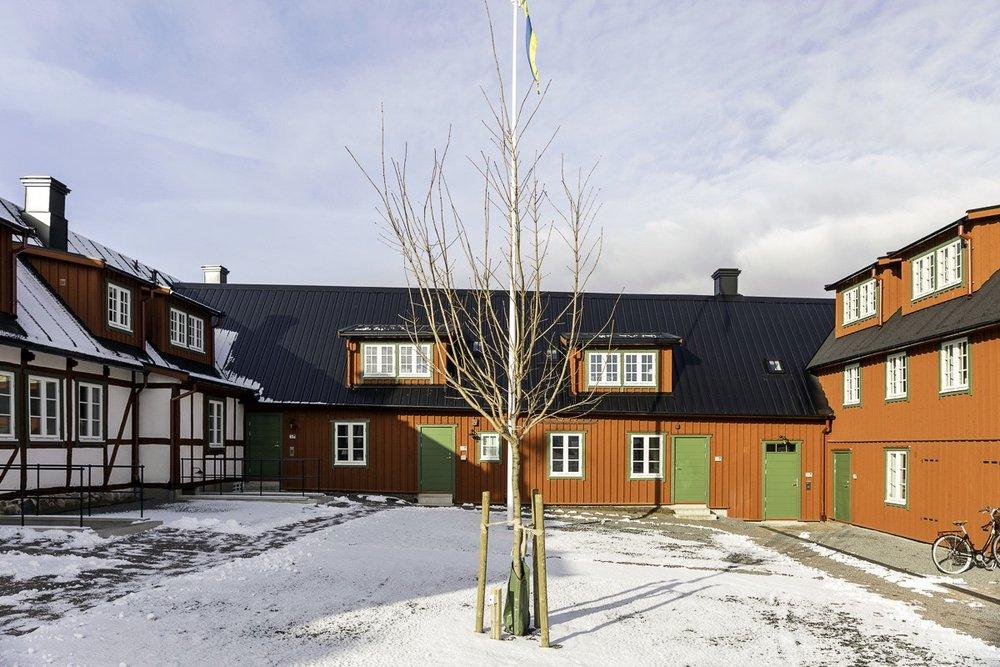 MMB_Agardhsg_feb_U6A7564 foto Mattias Nilsson.jpg