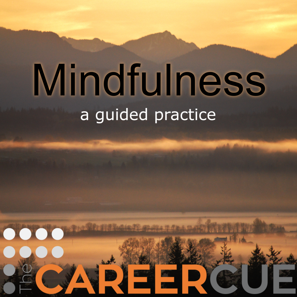 Mindfulness, meditation and being present guided practice