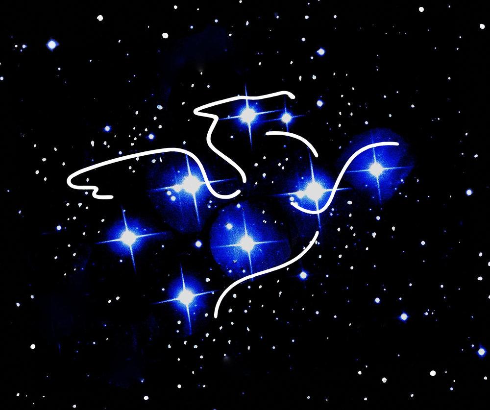 Pegasus_Logo_Raven_Kane_Clr_Raster.jpg
