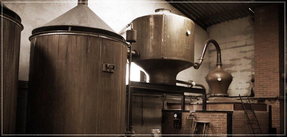 Distilling Roxane.jpg