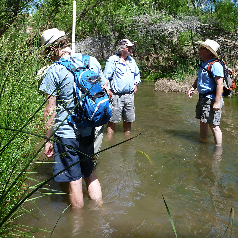 Citizen Scientists attending a stream assessment training