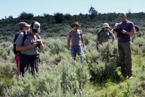 Citizen Scientists collecting vegetation data in sage-steppe