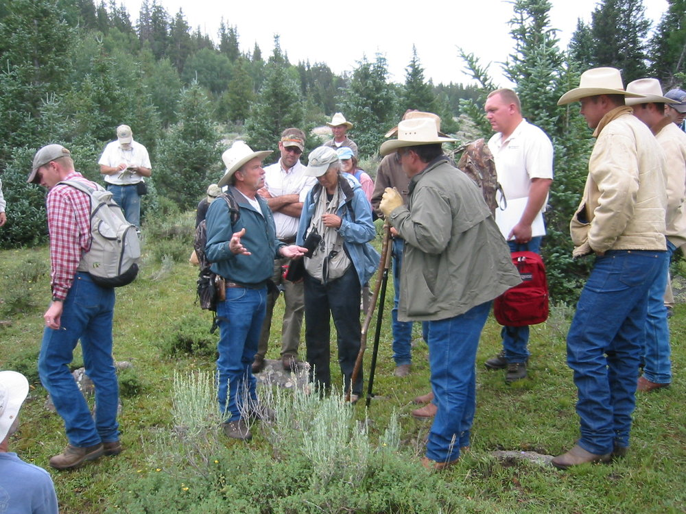 Field tour with stakeholders on Monroe Mountain, where the collaborative working group is addressing grazing management to help recover struggling aspen stand