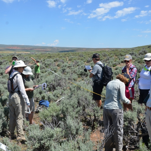 2015 Citizen Science field trip: conducting habitat assessments