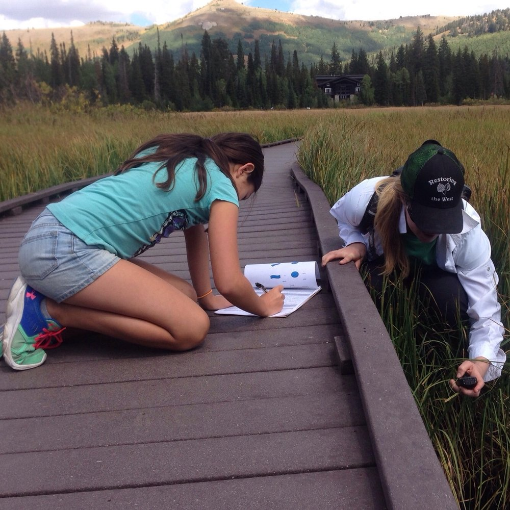 Community scientists collecting water quality samples