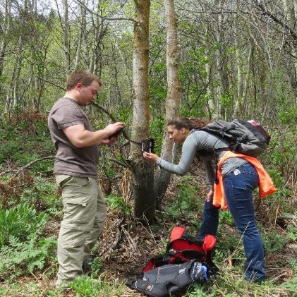 Community scientists installing a trail camera