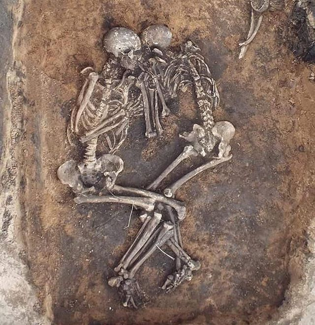 #Repost @archaeologymagazine ・・・ Evidence that a virulent form of the bacterium that causes bubonic plague was circulating at least as early as 1800 B.C. is one of ARCHAEOLOGY's Top Ten Discoveries of 2018.  archaeology.org/issues/323-1901/features/7200-russia-samara-bronze-age-plague  #Archaeology #Plague #Bacteria #Russia #BronzeAge (V.V. Kondrashin and V.A. Tsybin/Nature Communications)