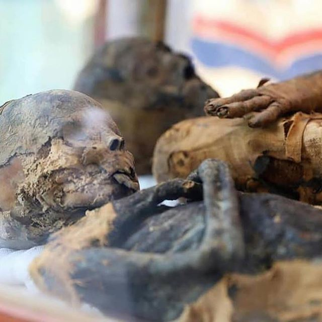 #Repost @archaeologymagazine ・・・ Egyptian archaeologists have discovered the Ptolemaic-era tomb of a nobleman named Toutou and his musician wife while investigating illegal excavations near the Al-Dayabat archaeological mound in Upper Egypt's Sohag.  archaeology.org/news/7527-190405-egypt-sohag-tomb (Egypt's Ministry of Antiquities)  #Archaeology #Ancient #Egypt #Tomb #PtolemaicPeriod