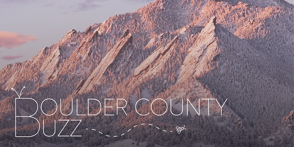 new boulder buzz header.png