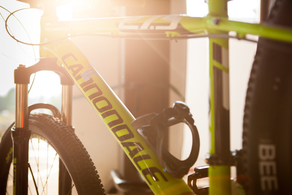 Cannondale Bikes Lead Snow King's Lineup Of Quality Equipment.jpg