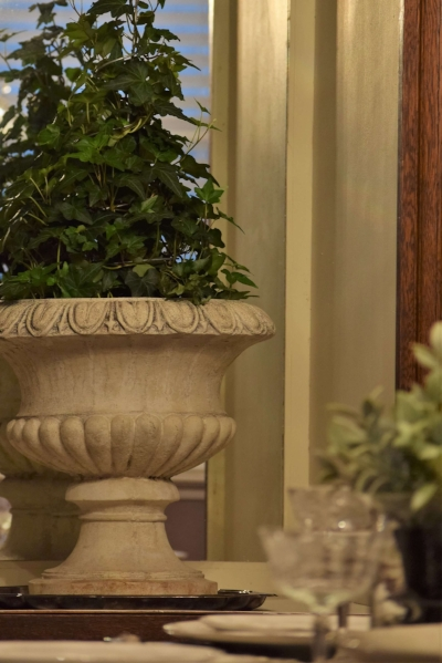 Ivy-topiary-tree-in-cement-urn