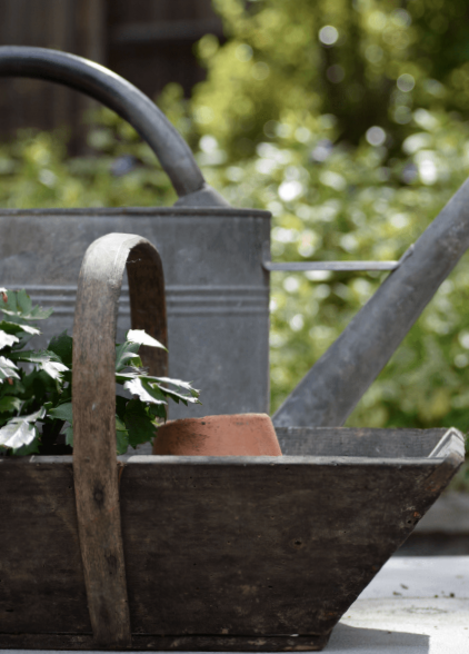 Easy-garden-maintenance