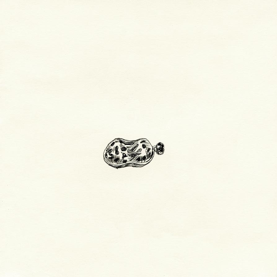flea-09.jpg