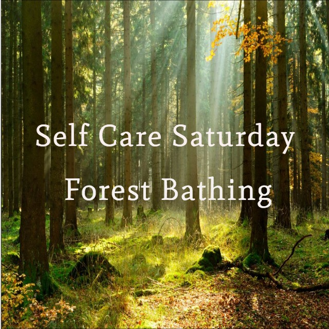 Self Care Saturday - Forest Bathing.jpg