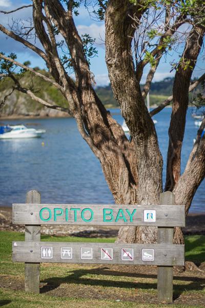 Opito-bay-beach-wedding-photography008.jpg