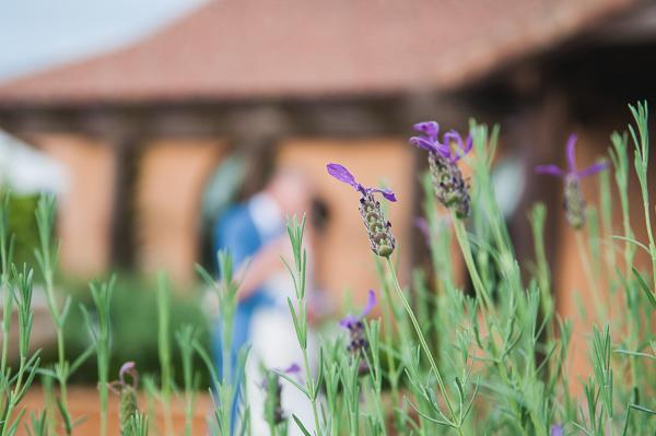 vineyard-wedding036.jpg
