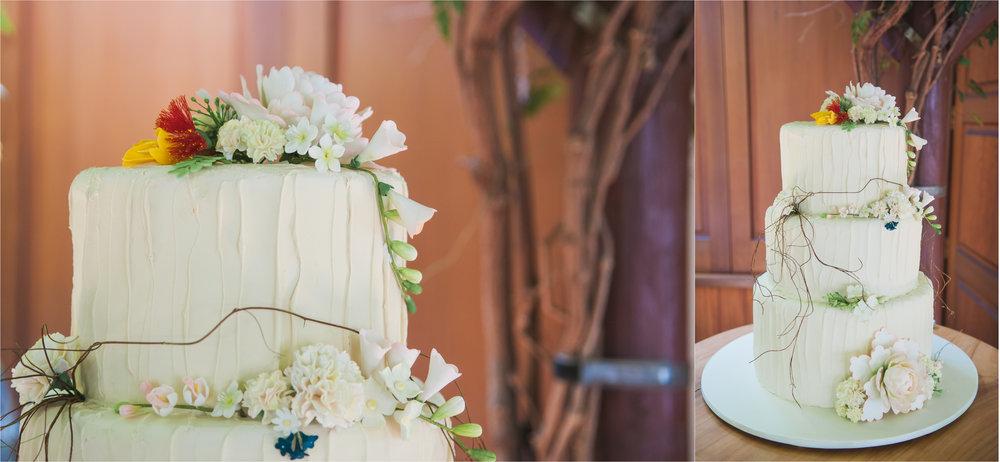 markovina-vineyard-wedding4.jpg