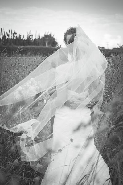 markovina-vineyard-wedding30.jpg