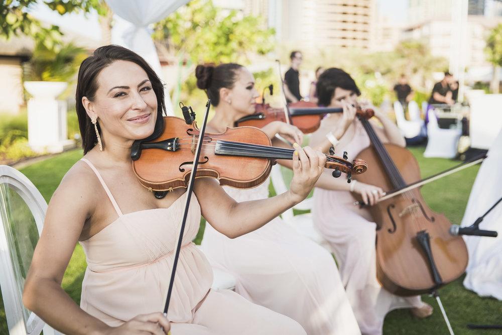 wedding-string-quartet.jpg