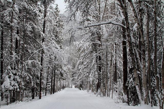 snow-981720_640.jpg