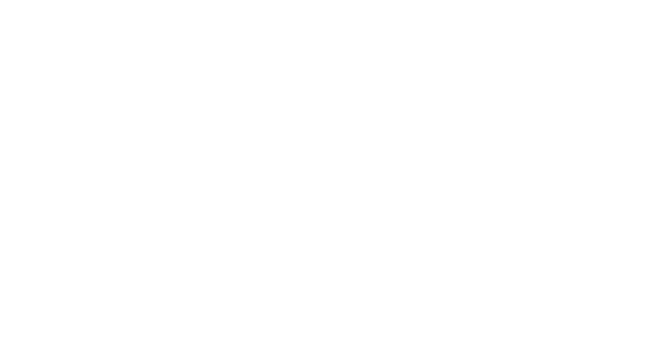The Skullers