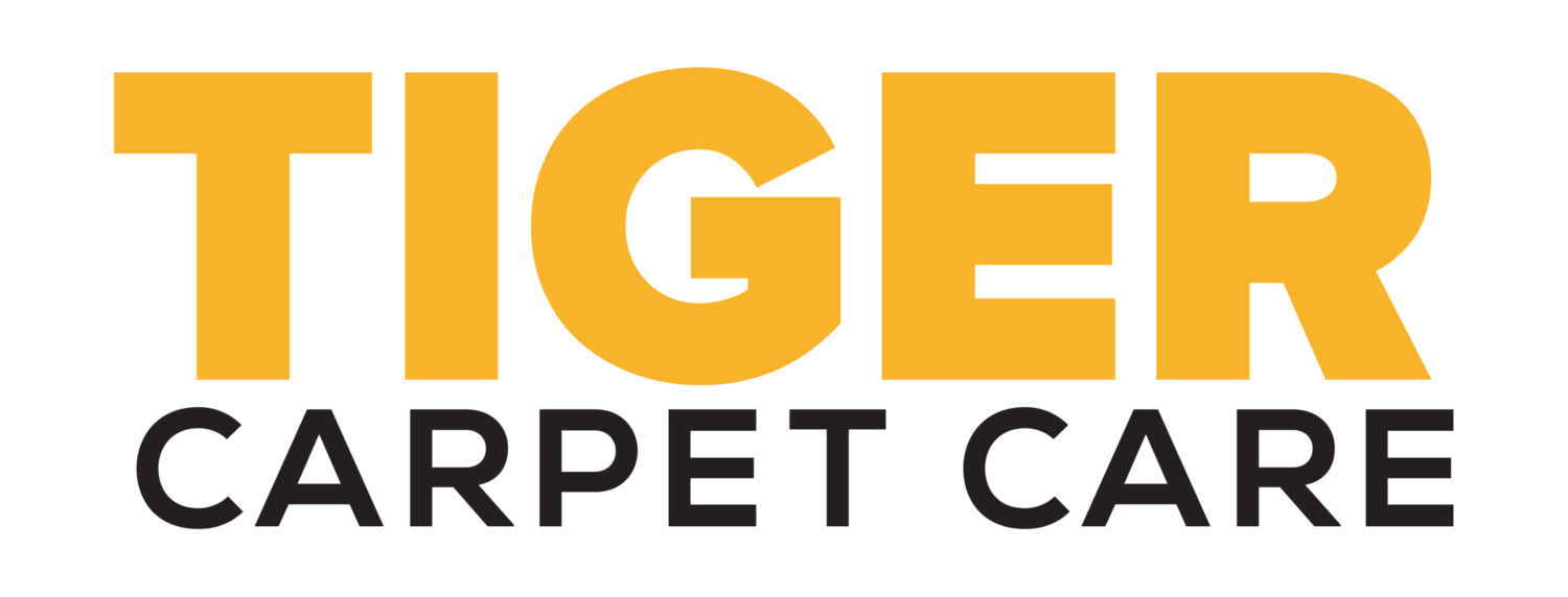 Tiger Carpet Care | Upholstery and Carpet Cleaning services