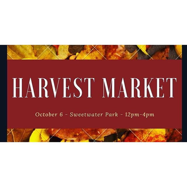 Come check out some brand new products and a bunch of awesome local vendors today in Sugarbush! The 2nd Annual Harvest Market hosted by @astilbe.marketplace 🍂 A perfect addition to your Thanksgiving weekend
