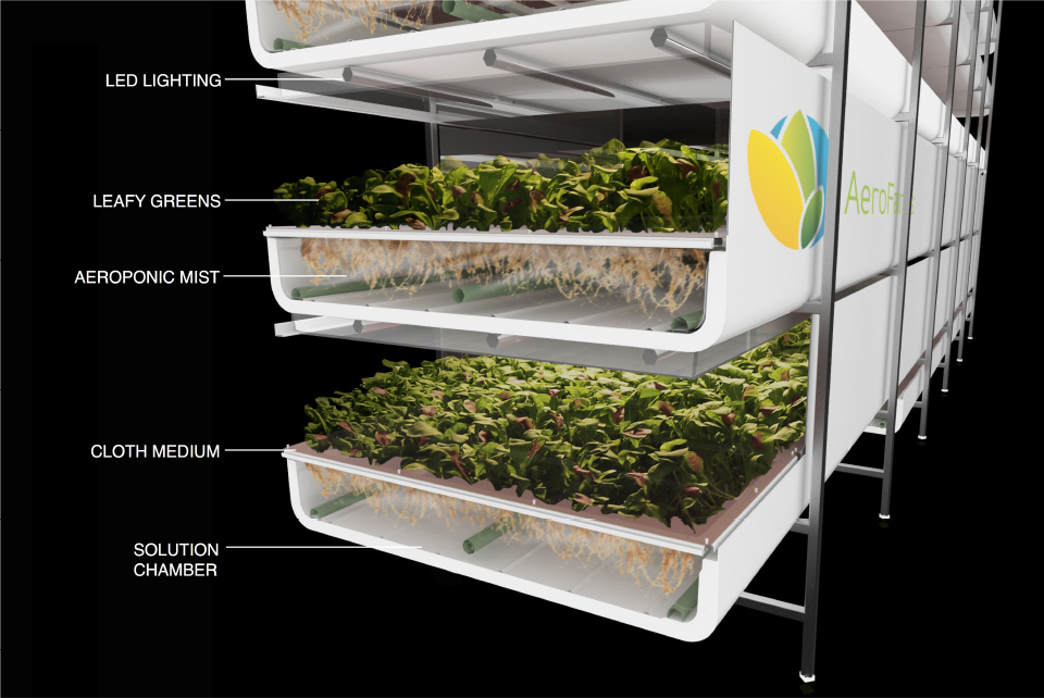 AeroFarms Smart Indoor Farming Startup