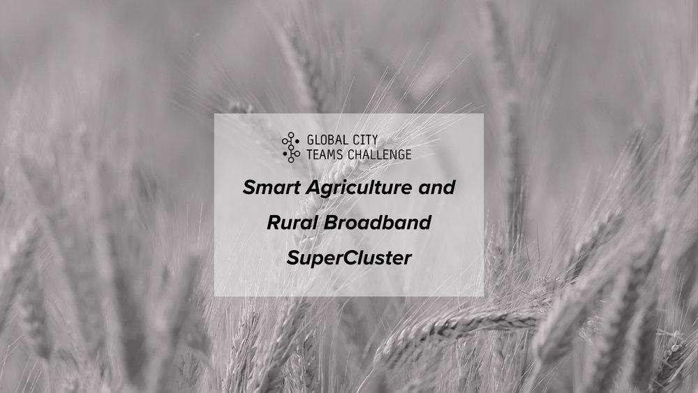 Venture Smarter at the GCTC Smart Agriculture and Rural Broadband SuperCluster Workshop.jpg