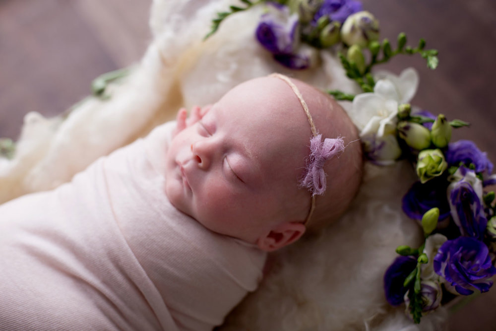 floralbaby newborn photography brisbane