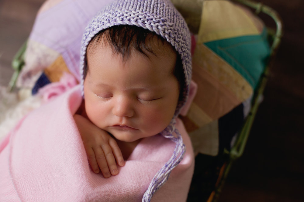 brisbane newborn photographyjpg