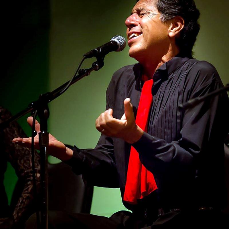 flamenco Roberto Zamora.jpg