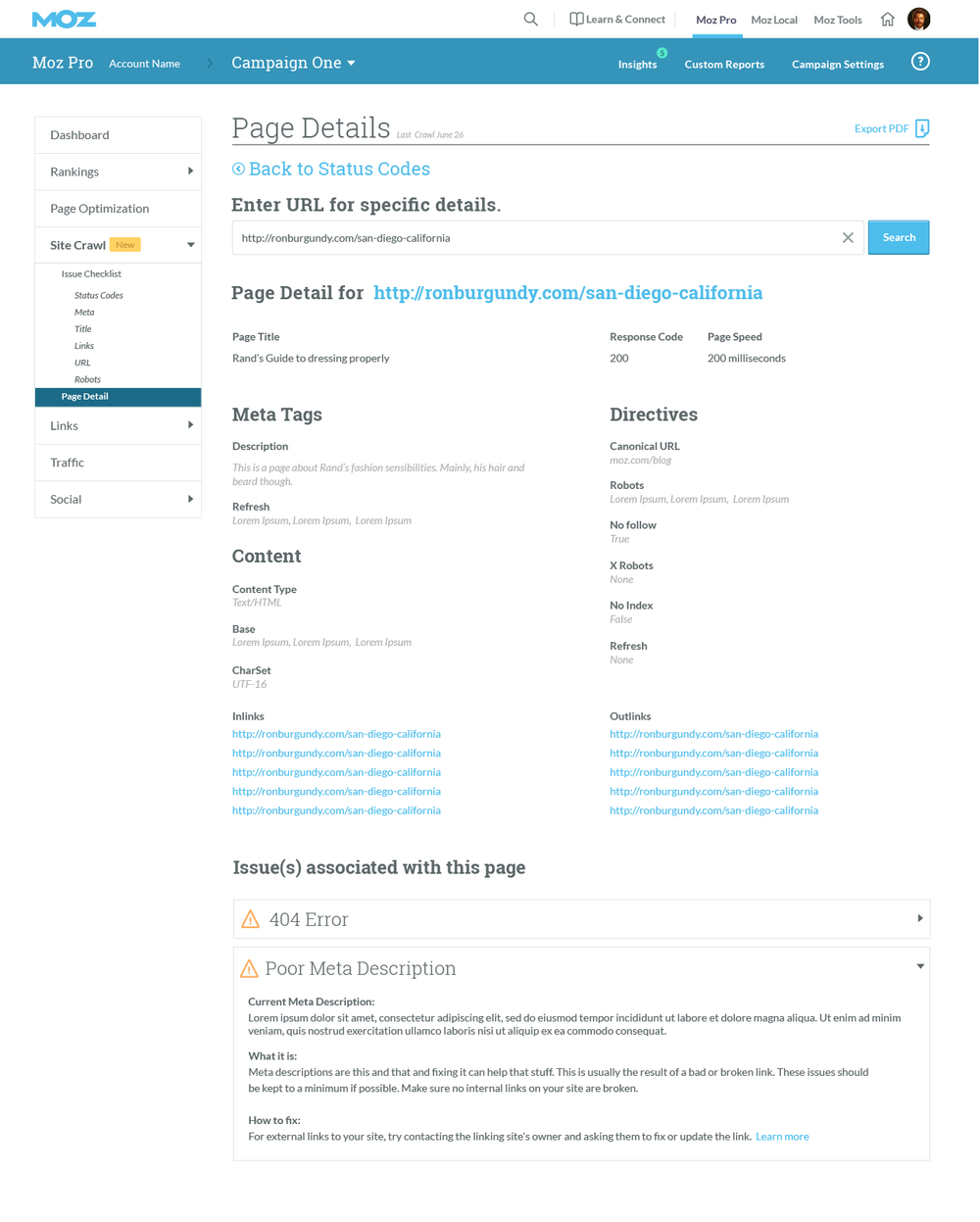"""We are now far down the rabbit hole. This is page detail. As a customer, if I were to click into the table items """"page detail"""" icon within the issue level I would end up here! I am now looking at a solitary page and all of its contributing information to this hectic site ecosystem."""