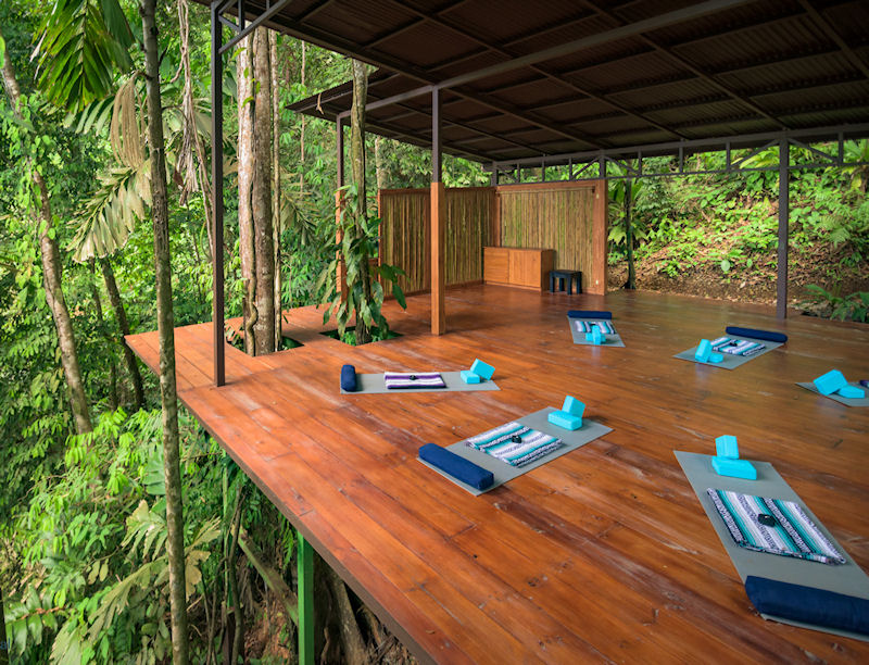 The yoga platform where classes are held daily in the middle of the rainforest. Mats, blocks, blankets and straps all on site, you don't need to bring anything unless you really want to. <3