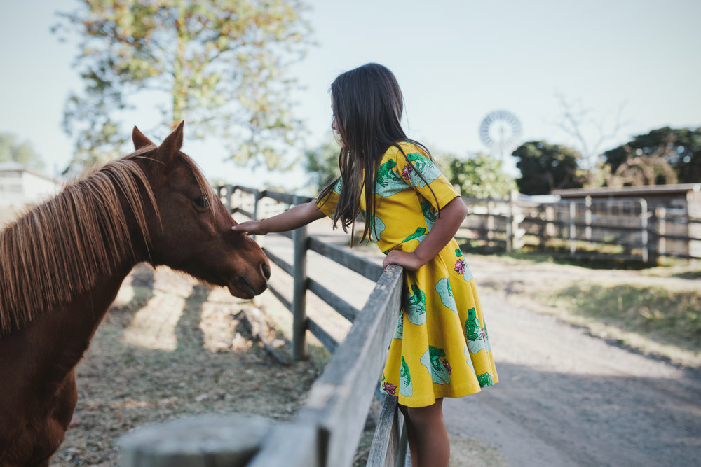 girl-patting-horse-commercial-photographer-siida.jpg