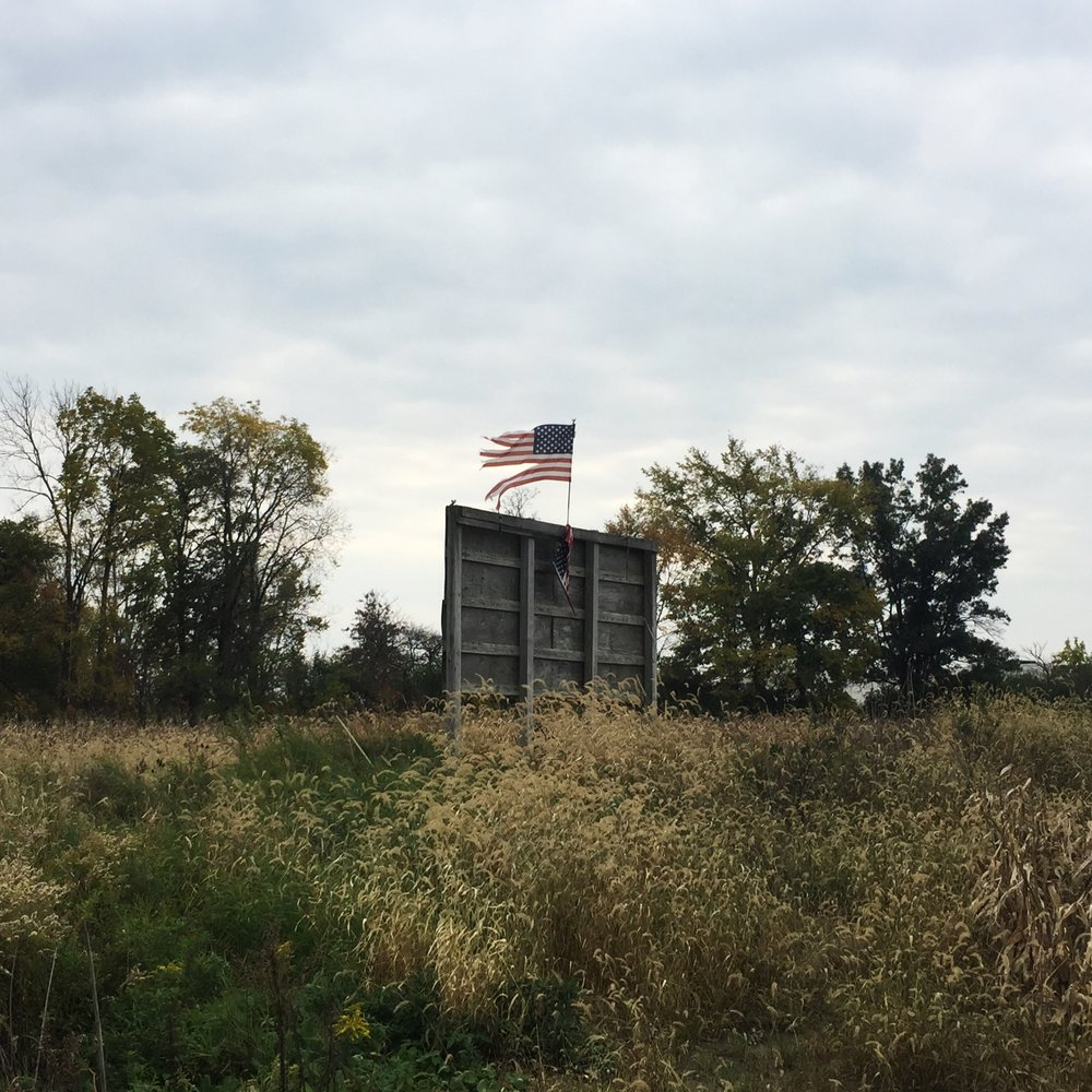 Roadside, Michigan, 10/29/16 © Sarah Windels