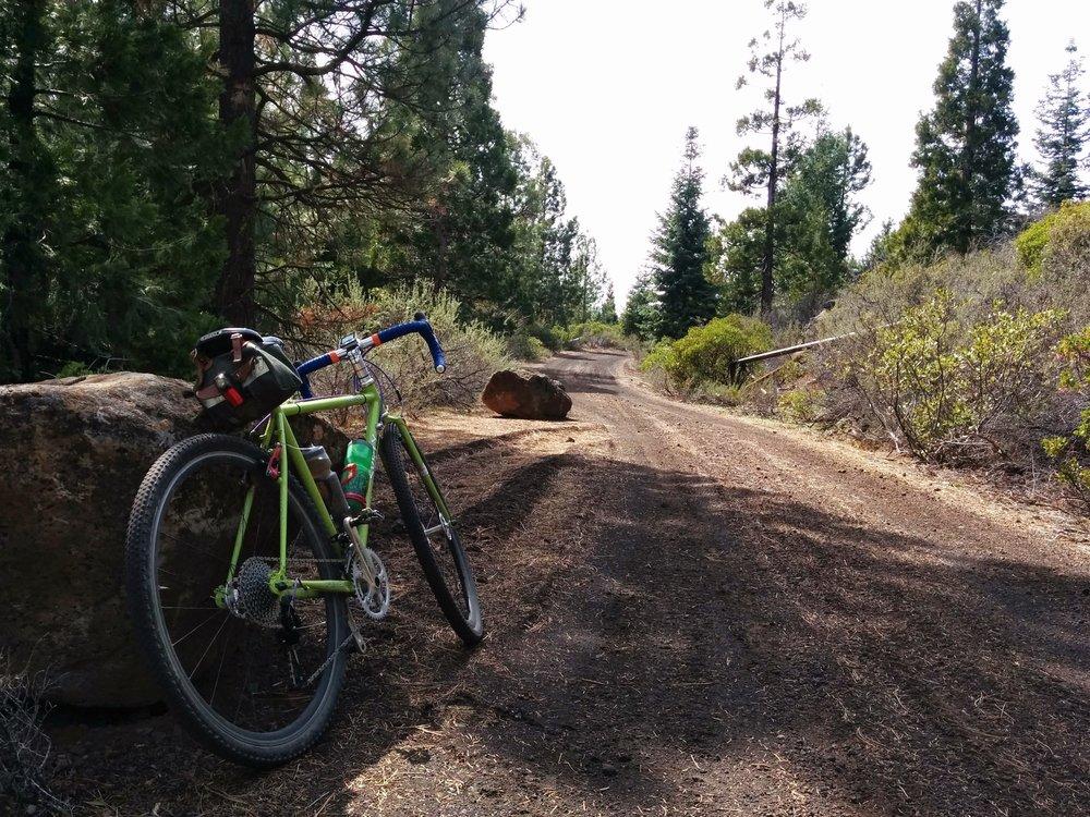 Aspen Lake Loop Road