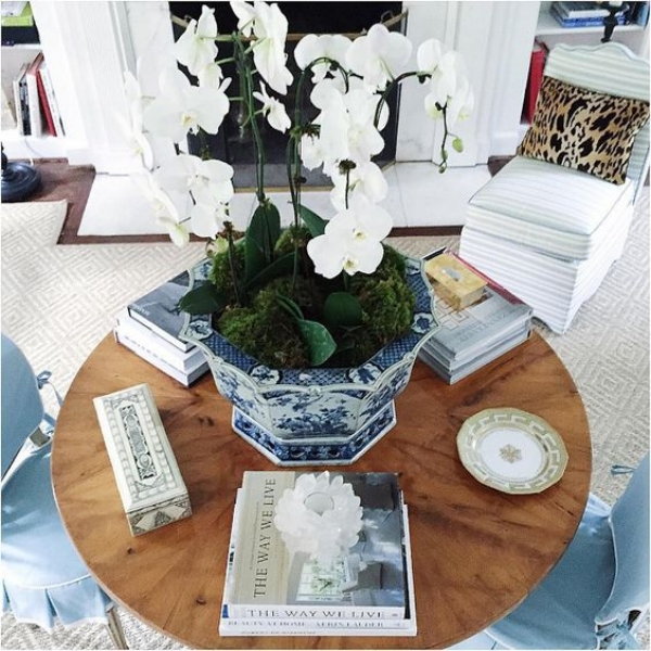 Potted Orchids in blue and white planters are stunning all year round. We just love this photo of the beautiful home of Sarah Bartholomew.