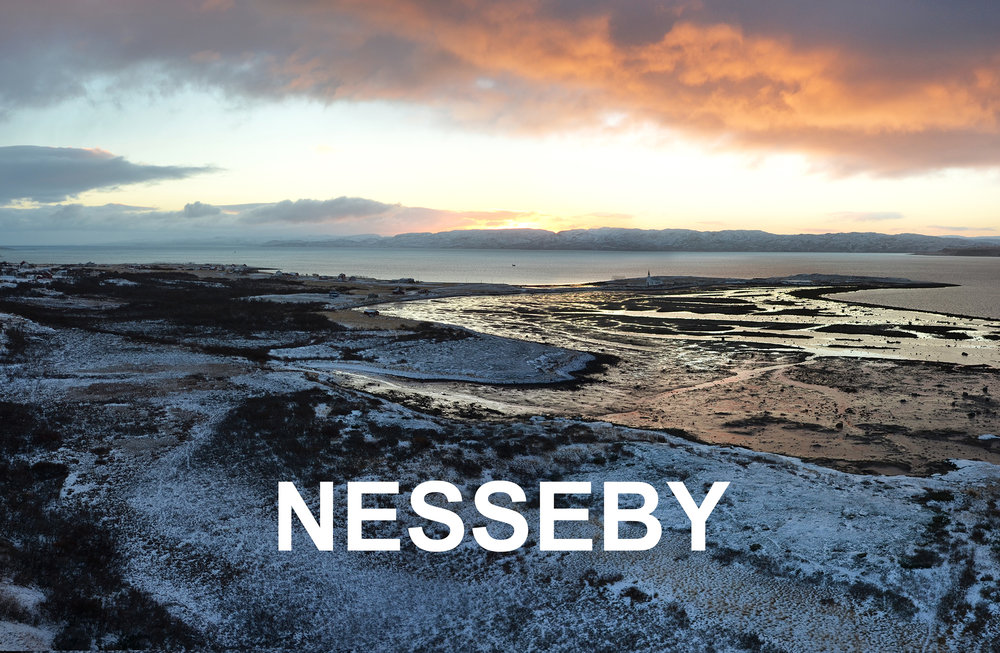 Nesseby Varanger areal copyright Biotope