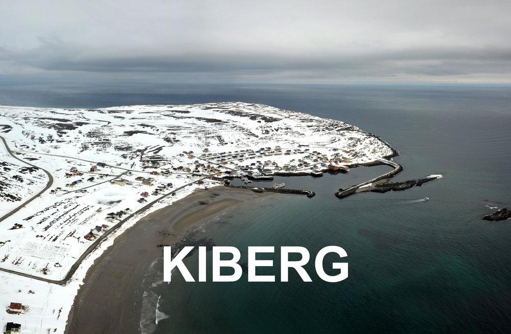 Kiberg Varanger areal copyright Biotope