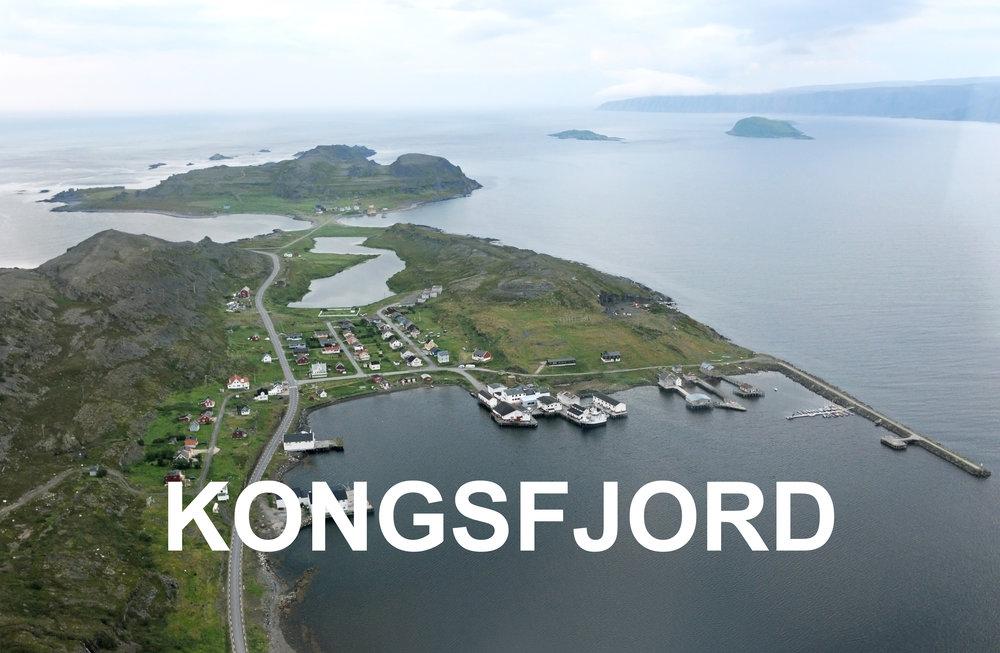 Kongsfjord Varanger areal copyright Biotope