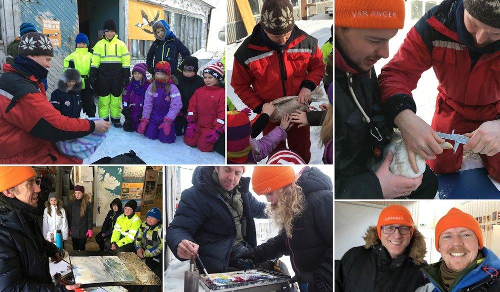 Gullfest 2016 Vardø Varanger Arctic Norway © Biotope IMG_2491.jpg