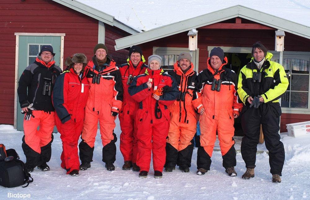 gullfest2013 Ateam of birding båtsfjord Amundsen Biotope.jpg