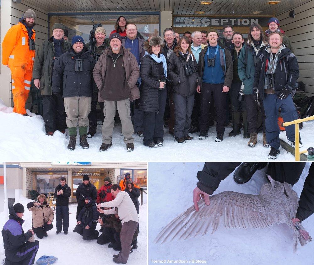 Gullfest2013 crew at Vardø hotel Biotope.jpg